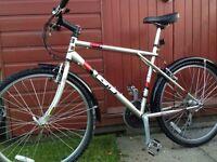 GT Palamor Mountain bike
