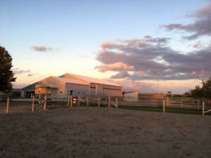 2 stalls available for horse boarding
