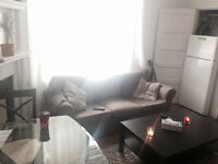 Downtown Room for rent Guy/Concordia Metro