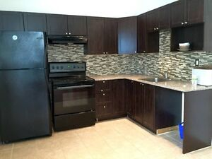 RENOVATED 4 1/2 in st-Henri / st-antoine - Parking available!