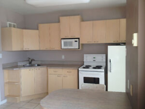 Bachelor Apartment in Westfort - Available March 1