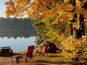 Enjoy a Fall/Thanksgiving weekend in cozy Kawartha cottage