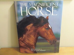 HORSES Coffee Table Book BIG Size, Quality Images: Stunning!