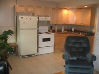 Two bedroom basement Suite to share