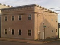 Completely renovated - ground level in 4 unit bldg