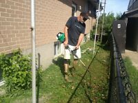 Landscaping Workers Hiring Now