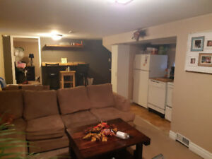 1 bdrm basement apartment in Ajax