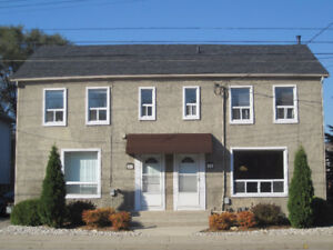 COMPLETELY RENOVATED BACHELOR UNIT IN DUNDAS (WELCOME DINNER)
