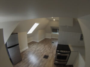 COMPLETELY RENOVATED QUIET LOFT. SEE VIDEO.