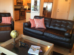 Executive furnished luxury downtown condo
