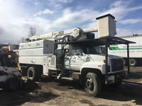 Tree services ,5 millions insurance & low as we can