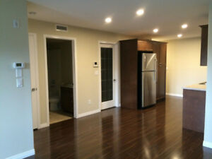 Best deal! Furnished 1 bedroom and a den condo in Stonebridge