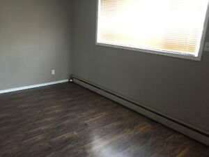 NEWLY RENOVATED APARTMENTS! 1.75 MONTHS FREE RENT!!