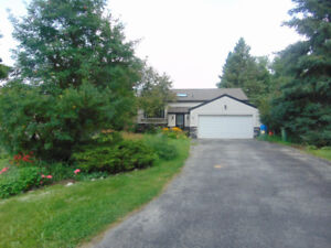 Raised Bungalow in Palgrave for Rent!