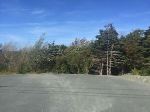 Building lot in Portugal Cove 1.013 acres $109,000 MLS 1136752 St. John's Newfoundland image 5