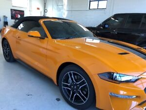 Auto Tint Express | Paint Protection Film - 3m Wraps - Tinting