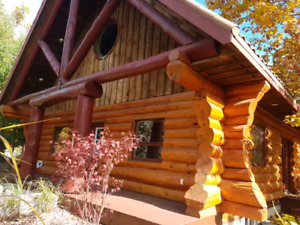 Log house rent this summer