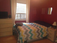 Large room for rent!