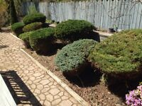 Landscaping property maintenance & snow removal