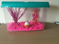 Small fish tank with everything u need