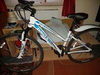 Woman's Dawes bike