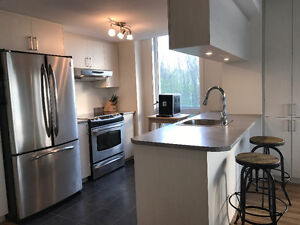 Appartement 4 1/2 style condo contemporain