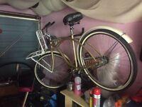American cruiser beach bike