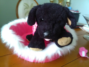 Build - A - Bear and accessories