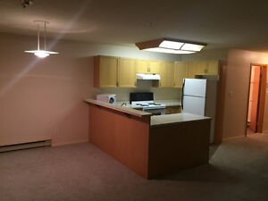 FOR RENT - 1 Bedroom Apartment