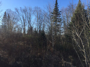 Sutherland's lake land for sale