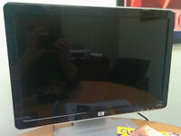 HP W1907 19-inch Widescreen Flat Panel LCD Monitor