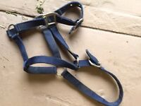 Headcollars and leadropes bundle
