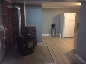 1 bedroom basement apartment Riverview