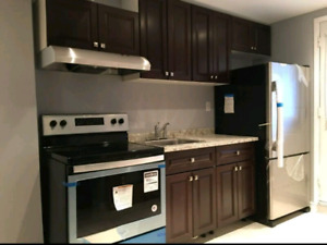 2 bedroom walkout basement for 2people  Churchill meadows missis