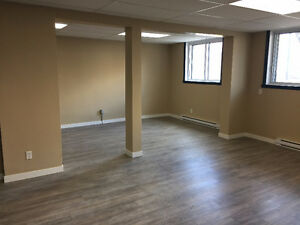 Fully renovated commercial/office space for rent, 3 months free!