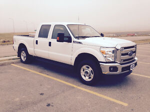 Ford F-250  4x4 and F550 4x4 and 2 Horses and Horse Trailer