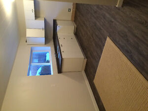 1 bedroom Basement Suite in family home.