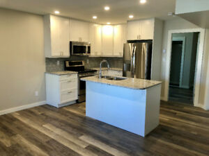 2 Bedroom Brand New Walkout Suite