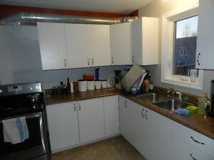 Kitchen cabinets, counter and sink