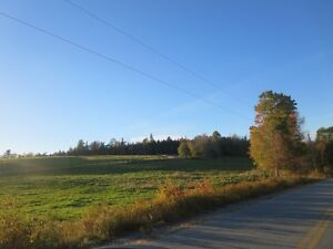 65 Acre Hillside Property For Sale