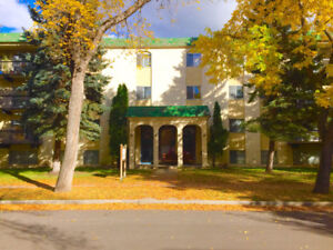 Bachelor Apartment Available Immediately! (Oliver Square)