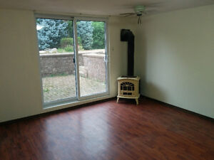 1 Room Walkout basement Separate entrance for rent