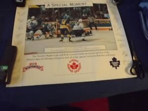 VARIOUS TORONTO MAPLE LEAFS ITEMS:BB CAP,POSTERS,PENNANT,BOOKS