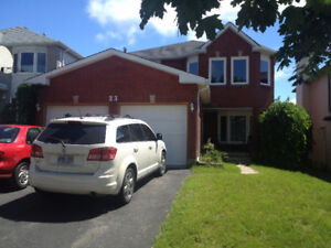 4bdr/3wsh Main floor Renovated Apartment in Barrie