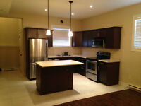 Basement apartment for rent in Dieppe. Avail now!