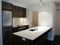 !!!BRAND NEW LUXURIOUS APARTMENT HEART OF DOWNTOWN MONTREAL!!!
