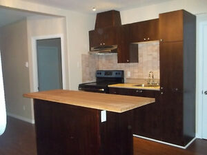 Superbe 2 chambres secteur Hull - Superb 2 bedroom in Hull