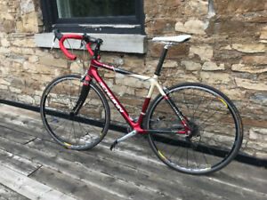 Carbon Road Bike, full Dura-Ace Groupset, brakes, and levers.