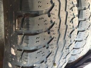 Ford F-150 Winter tires