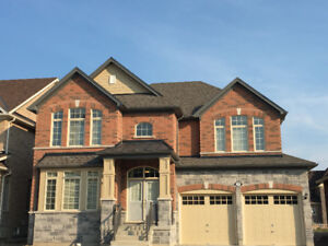 Brand New 3200 SQ Detached Home For Rent Springwater